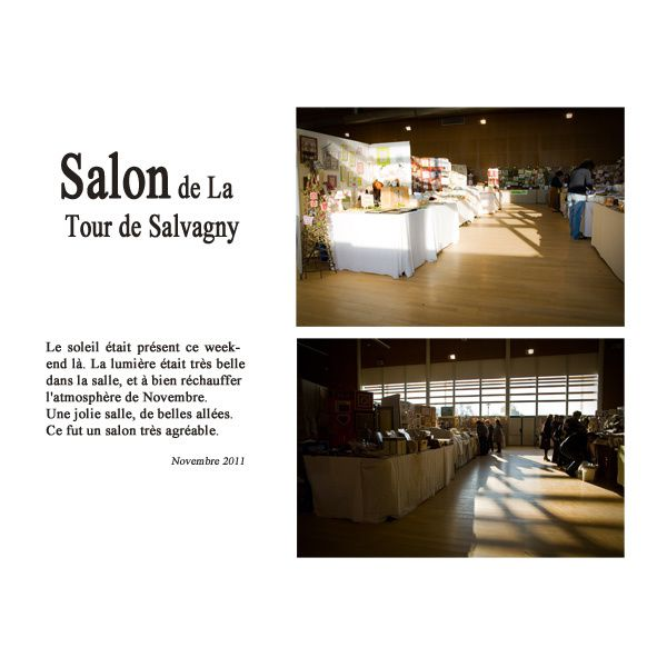 tour de salvagny copie