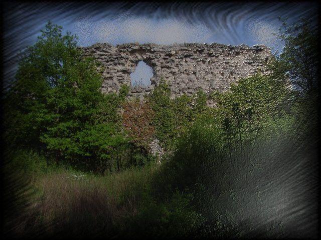 Mur en ruine et végétation sont souvent un couple idéal !