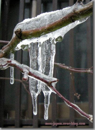 glace-1.jpg
