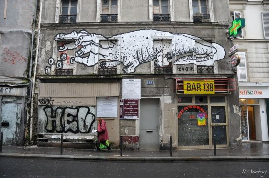 zoo project-paris-street art-rue de Charonne