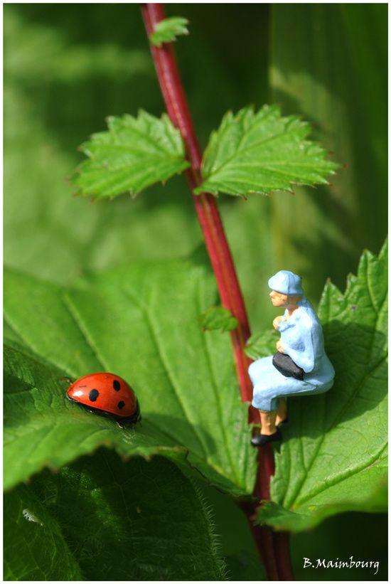 Lilliputien 14-coccinelle-vegetation-dame en bleu-