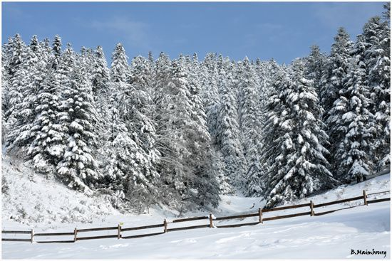 Payolle-Campan-Pyrenees8-neige-paysage