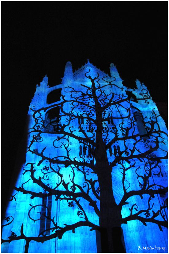Beauvais-la cathedrale infinie-son et lumiere-8