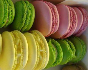 macarons-mercotte.JPG