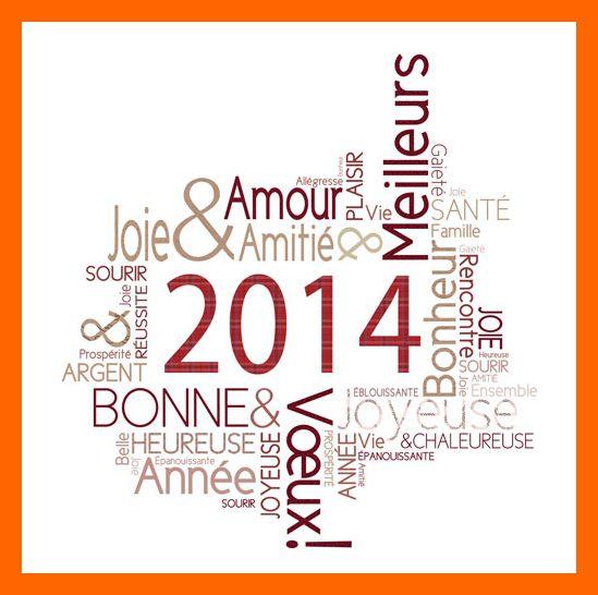 meilleurs-voeux-2014-2.jpg