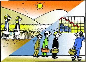 economie-algerie.jpg