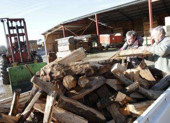 Le-bois-une-ressource-largement-disponible.jpg