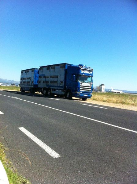 000011 Camion Poncy