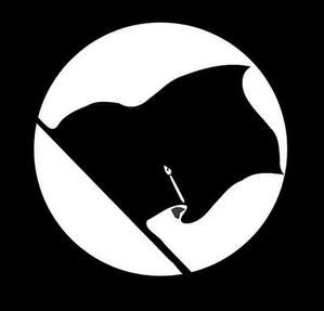 070515080509541px-drapeau_noir.jpg