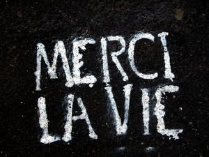 merci-copie-1.jpg