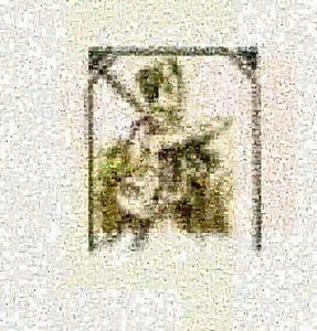 image-mosaic-aa4d9e35083486243365f9258ec11d0f-.jpg