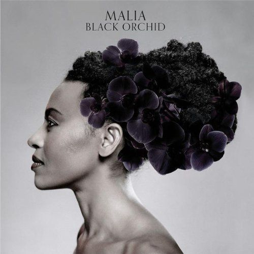 Malia_BlackOrchid.jpg