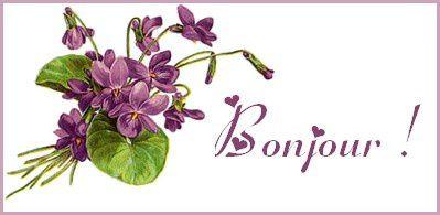 violetbonjour