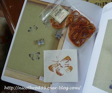 Papillon-azure-Lhassa.JPG