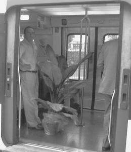 Photo perso Marie-Laetitia Gambié. Dans le RER B un soir de grande lassitude moite.