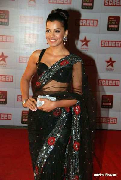 star-screen-awards-2011-w.jpg