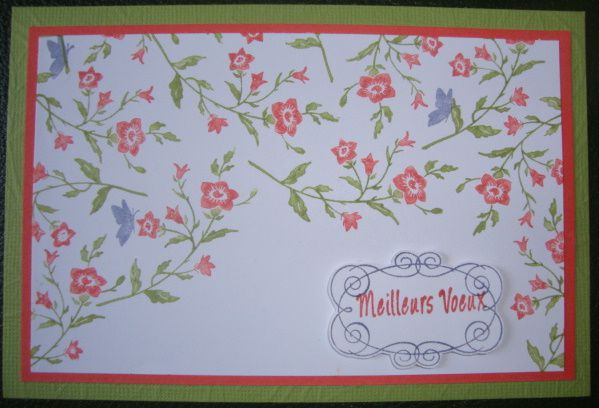 Combo-exceptionnel-Stampin-Class-Janvier-2012.JPG