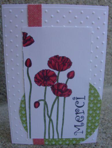 Poppies mariabilies