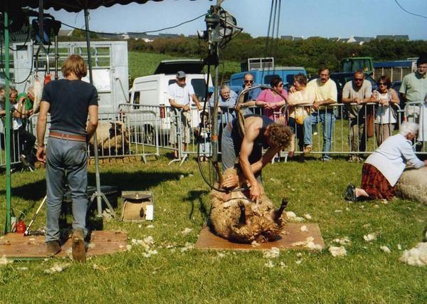 foire-au-mouton-19.jpg