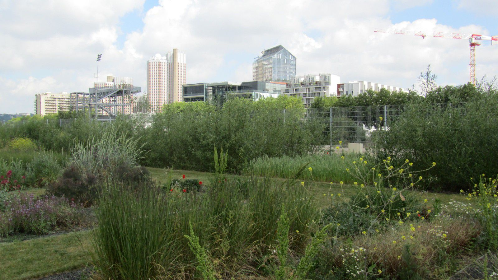 http://idata.over-blog.com/0/32/10/53/villes-geo-urbaine/Jardin-Ile-Seguin.jpg
