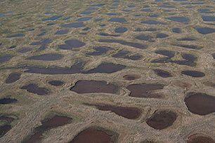 permafrost.jpg