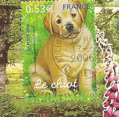 Timbres-Le-chiot.jpg