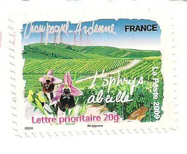 Timbres-Champagne-ardenne-l-ophrys-abeille.jpg