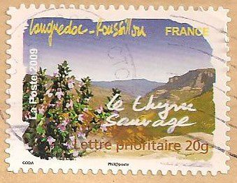 Timbres-Languedoc-et-Roussillon-le-thym-sauvage.jpg