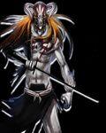 Ichigo Vizard 2