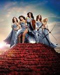 desperate-housewives-2