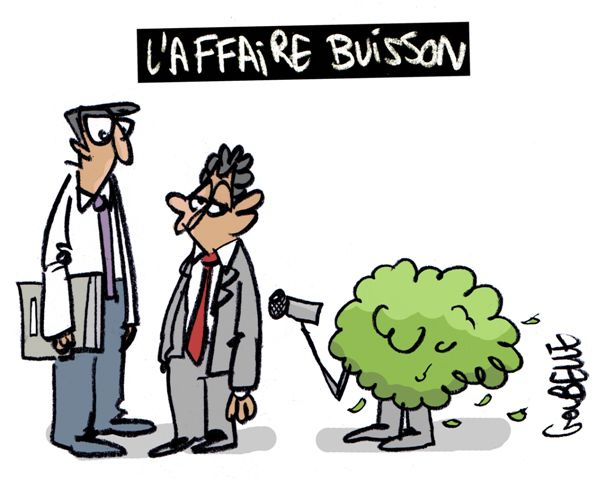 affaire_buisson-REDUIT.jpg