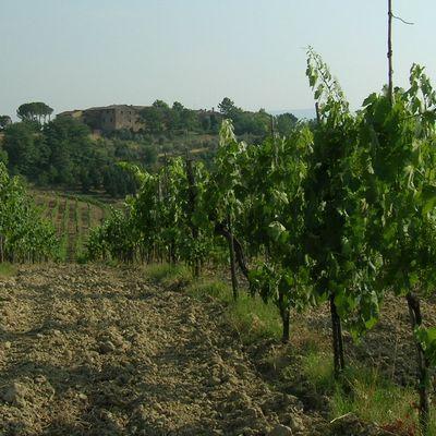 tn Toscane7