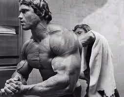 Arnold Schwarzenegger 04