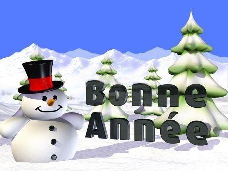 big_bonne-annee.jpg