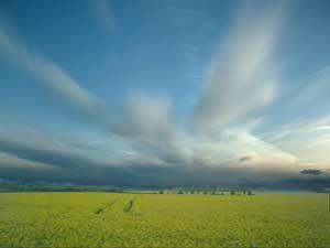 precipitations-agricoles.jpg