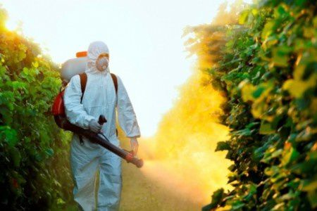 danger-pesticides.jpg