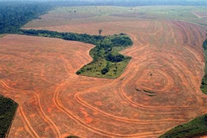 deforestationamazonie-copie-1.jpg