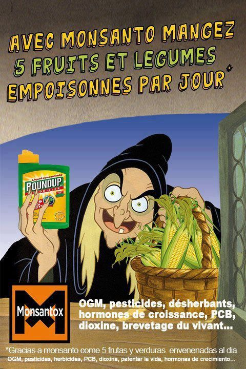 monsanto-copie-1.jpg