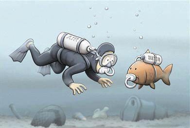 eau-polluee.jpg