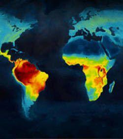 carte-biodiversite-danger.jpg
