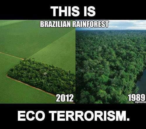 eco-terrorisme.jpg