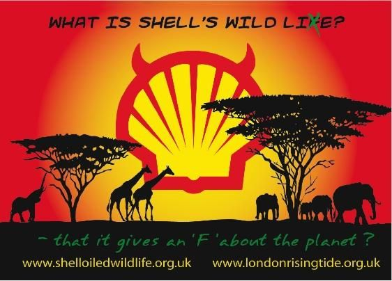 Petrole-shell-pollution-nigeria-greenwashing.jpg