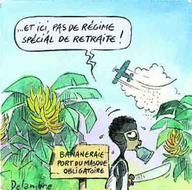 bananes-pesticides.jpg