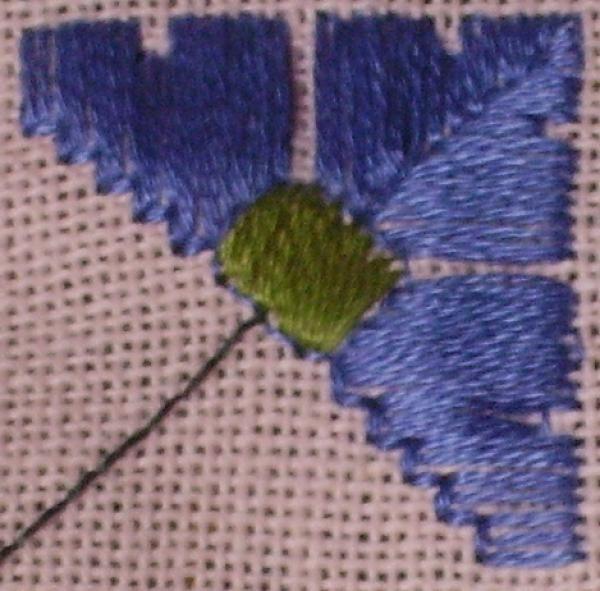 2eE-fleur-parme.jpg