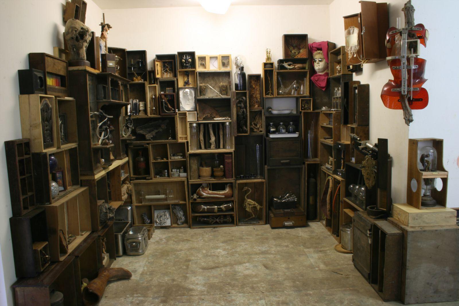 Cabinet de curiosit s le cabinet de curiosit s de jean duhurt plasticien chirurgiste - Le cabinet de curiosites ...