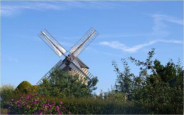 à Lancieux le moulin de Bluglais est le seul survivant des 3 moulins qui existaient au 16eme siècle.