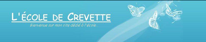 ecole-de-crevette-copie-1.jpg