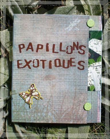 album papillons exotiques (1)