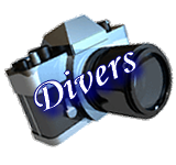 cf2013-photos-divers.png