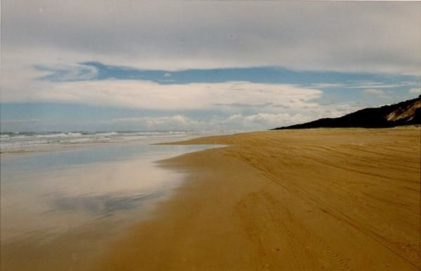 Fraser Island © Anma. K. Reproduction interdite sans autorisation. Reproduction strictly forbidden without permission.